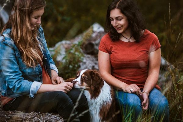 Sonja Neuroth Tierhaltercoaching Coaching Hund