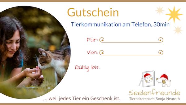 Weihnachten Adventskalender Tierkommunikation