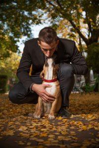 Hund Tier Mann knutschen