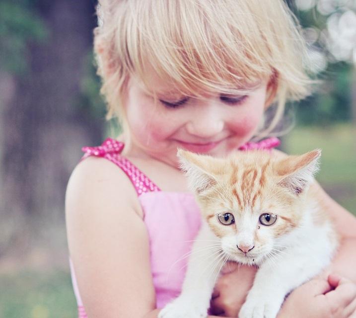Wann ist Tierkommunikation hilfreich?