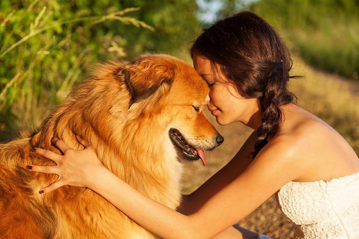 Finde DEINE Tierkommunikation