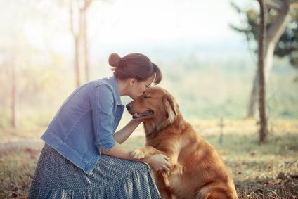 Tierkommunikation Hund Schnupperkurs