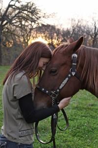 Mensch und Tier Pferd Tierkommunikation