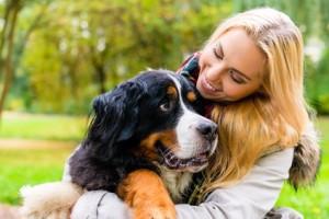 Mensch und Tier Frau Hund