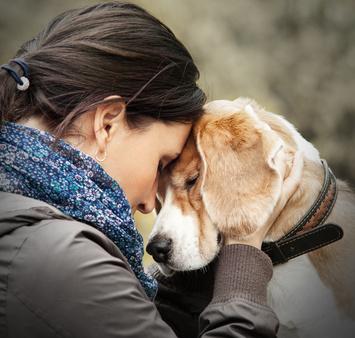 Mensch und Tier Coaching Hund Sterbebegleitung