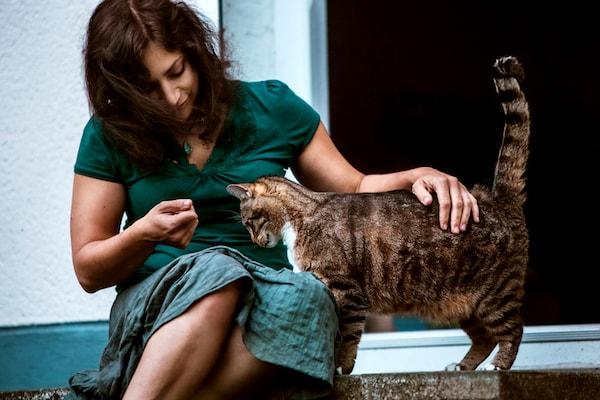 Lebe DEINE Tierkommunikation