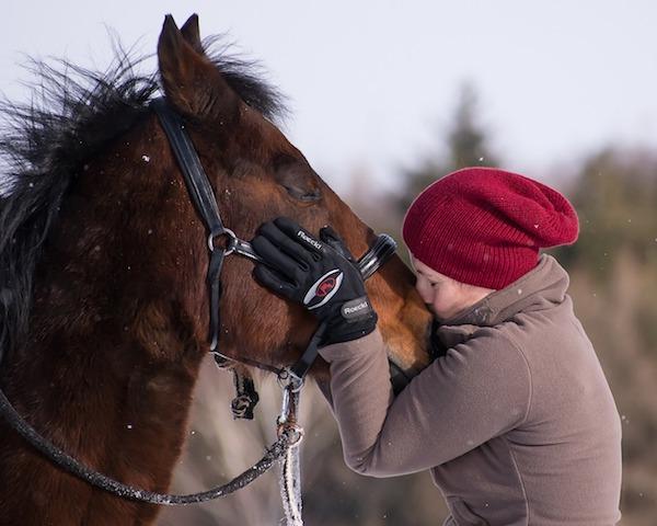 18- Freude und Leichtigkeit mit deinem Tier