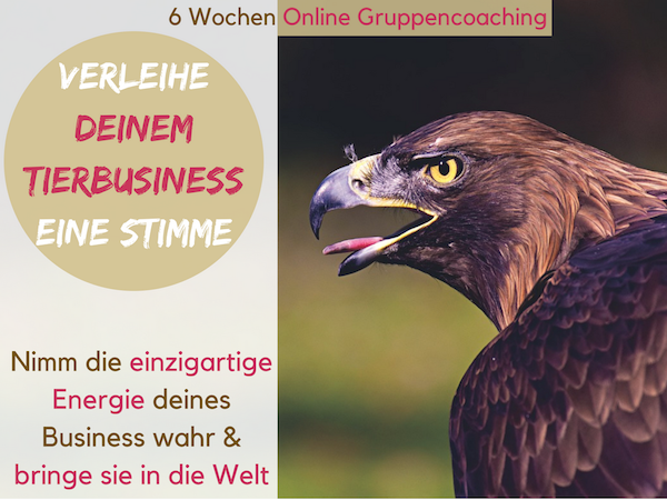 Tierbusiness Berufung mit Tieren Marketing