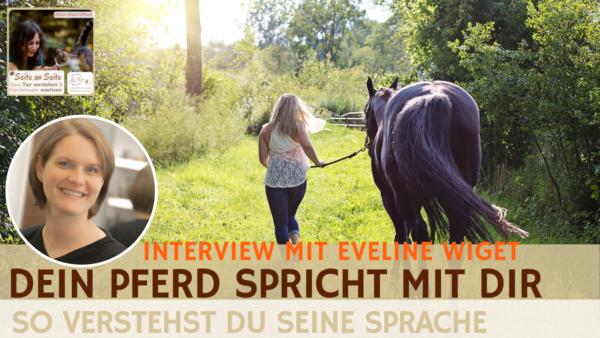 53 – Dein Pferd spricht – Hörst du zu? (Interview mit Eveline Wiget)