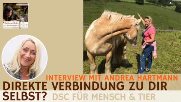 62 – Direkte Verbindung zu dir selbst: DSC für Mensch & Tier