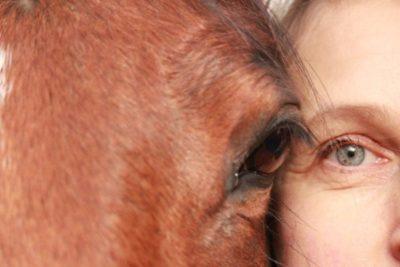 Berufung mit Tieren: Feedback von meinen Animal Creation Absolventen