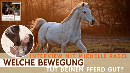 68 – Welche Bewegung passt zu deinem Pferd? (Interview Michelle Rasel)