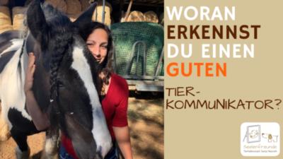 66 – Woran erkennst du einen guten Tierkommunikator?