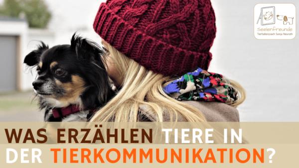 70 – Tierkommunikation: Was erzählen Tiere über ihre Menschen?