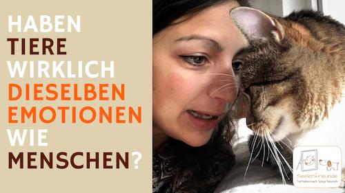 71 – Haben Tiere wirklich dieselben Emotionen wie Menschen?