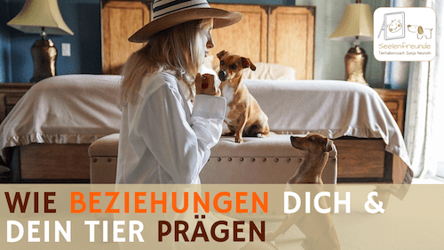 76 – Wie Beziehungen dich & dein Tier prägen