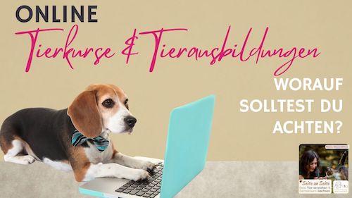 105 – Online Tierkurse & Tierausbildungen – was du beachten solltest